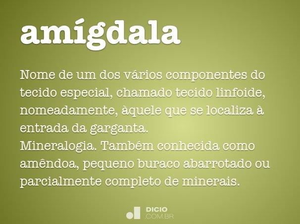 am�gdala