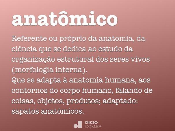 anatômico