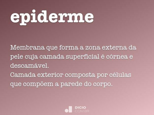 epiderme