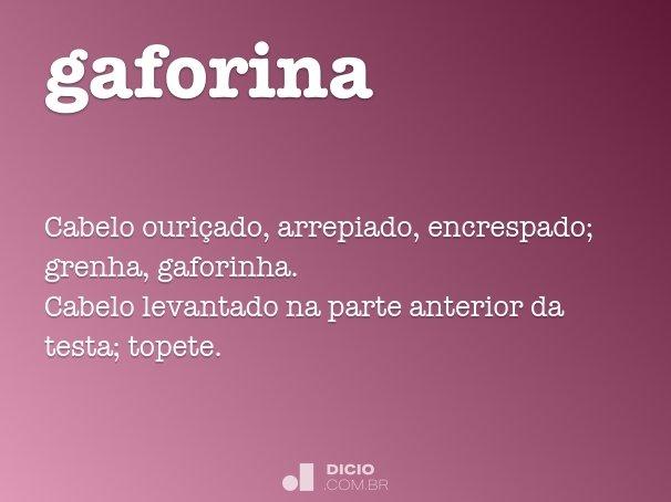 gaforina