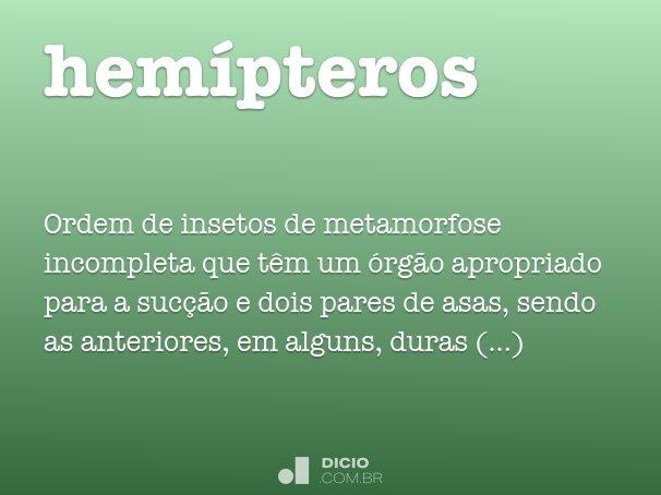 hem�pteros