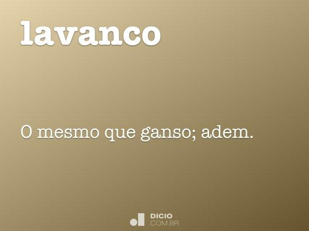 lavanco