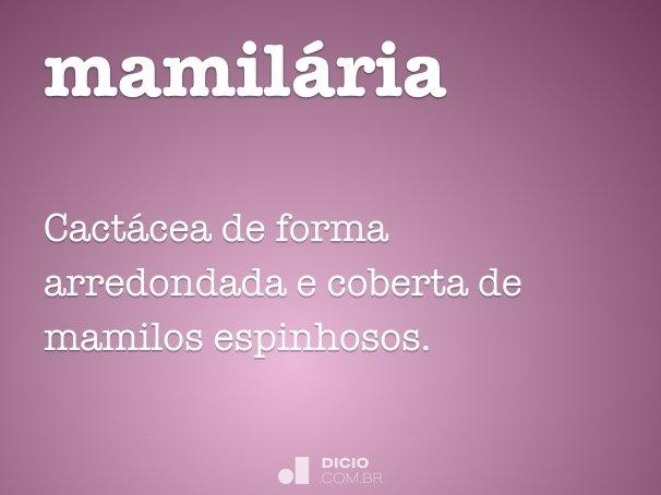 mamilária