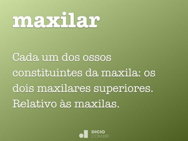 maxilar