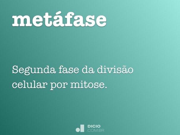 met�fase