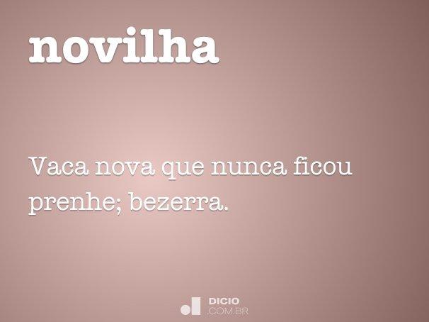 novilha