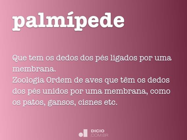 palm�pede