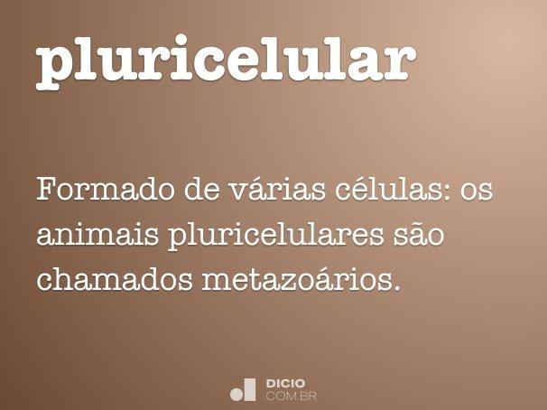 pluricelular