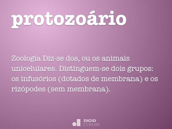 protozoário