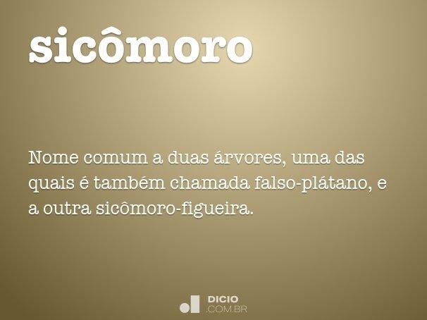 sicômoro