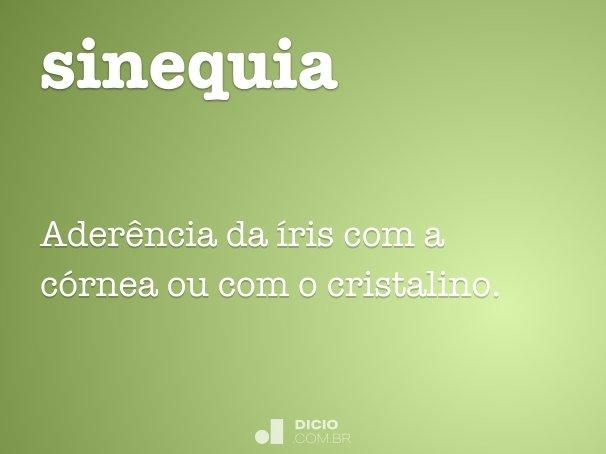 sinequia