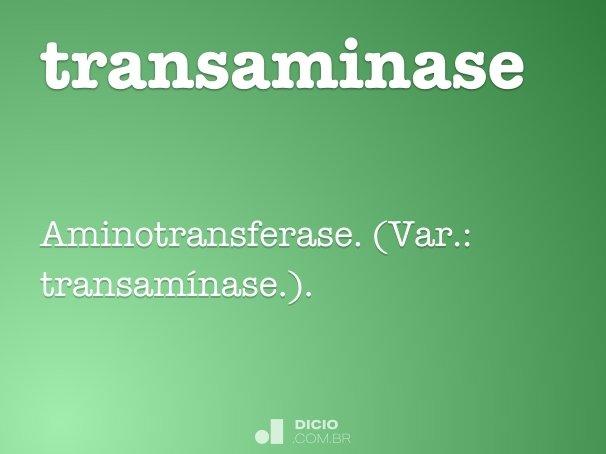 transaminase